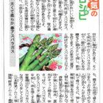 西日本新聞元気のレシピコラム